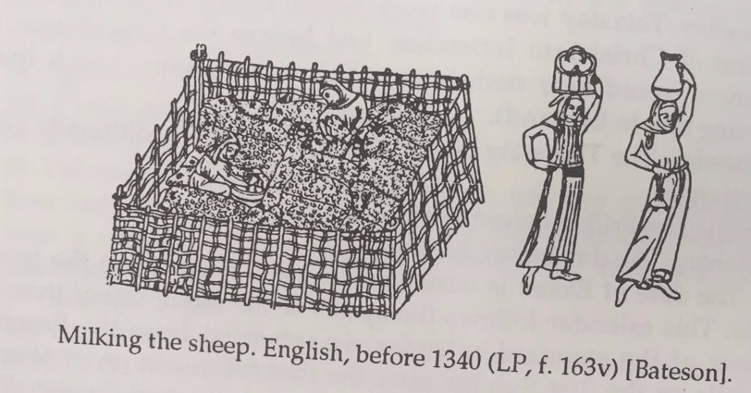 """""""A drawing of sheep in a pen, laden with milk. The image is askew, almost as if the author of this post was kinda lazy."""
